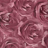 roza-fiolet